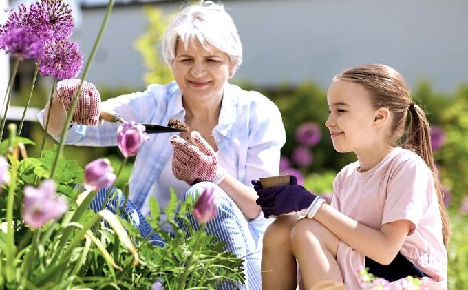 4 Spring Activities for Seniors